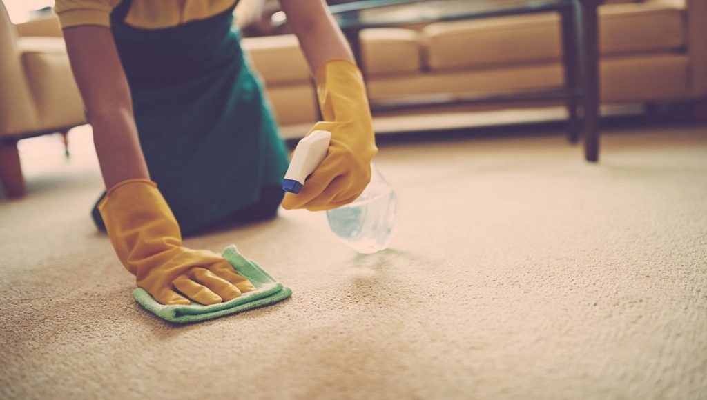 Unique Carpet Cleaning Services