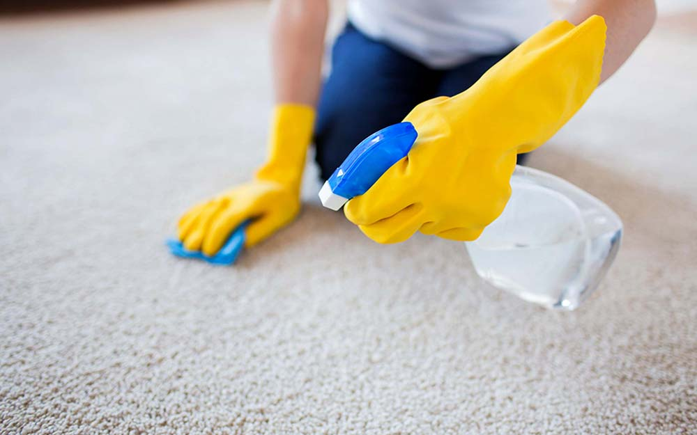 How much does it cost to have a carpet cleaned?