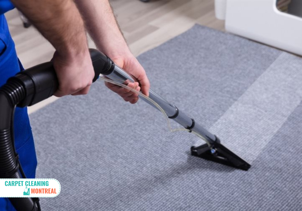 What benefits you get from deep carpet cleaning