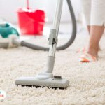 organic Carpet Cleaning Services in Montreal