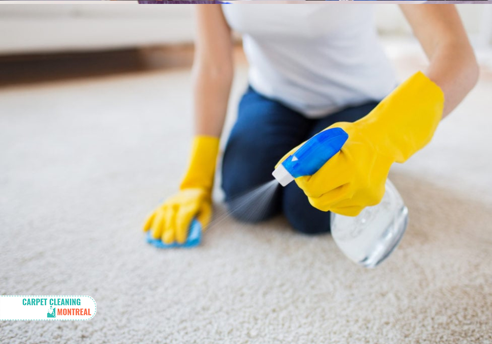 Our Professional Carpet Cleaning Services