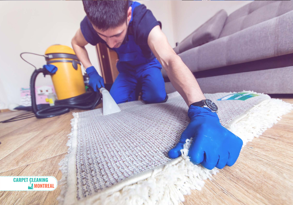 Weekly Carpet Cleaning in Montreal